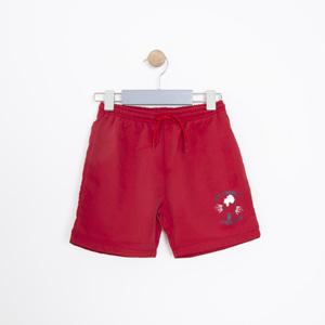 Erkek Çocuk Şort Kırmızı (1-12 yaş)